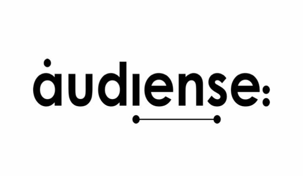 Audiense features